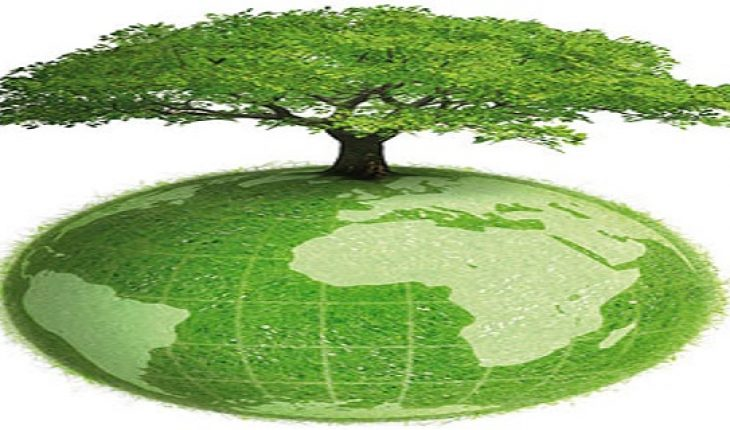 Mahendra Welfare Foundation and Jainbandhutv vikas Forum launched a campaign to protect the environment